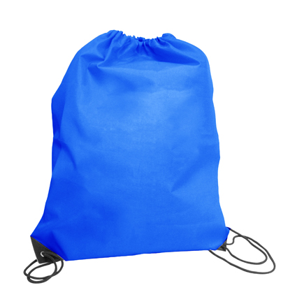 Large Tote/Sports Bag Mid Blue