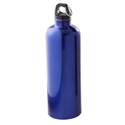 25oz Stainless Steel Bike Bottle Blue/Black