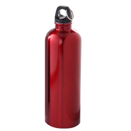 25oz Stainless Steel Bike Bottle Red/Black