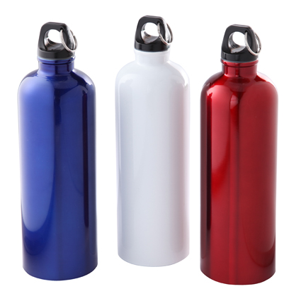 25oz Stainless Steel Bike Bottle