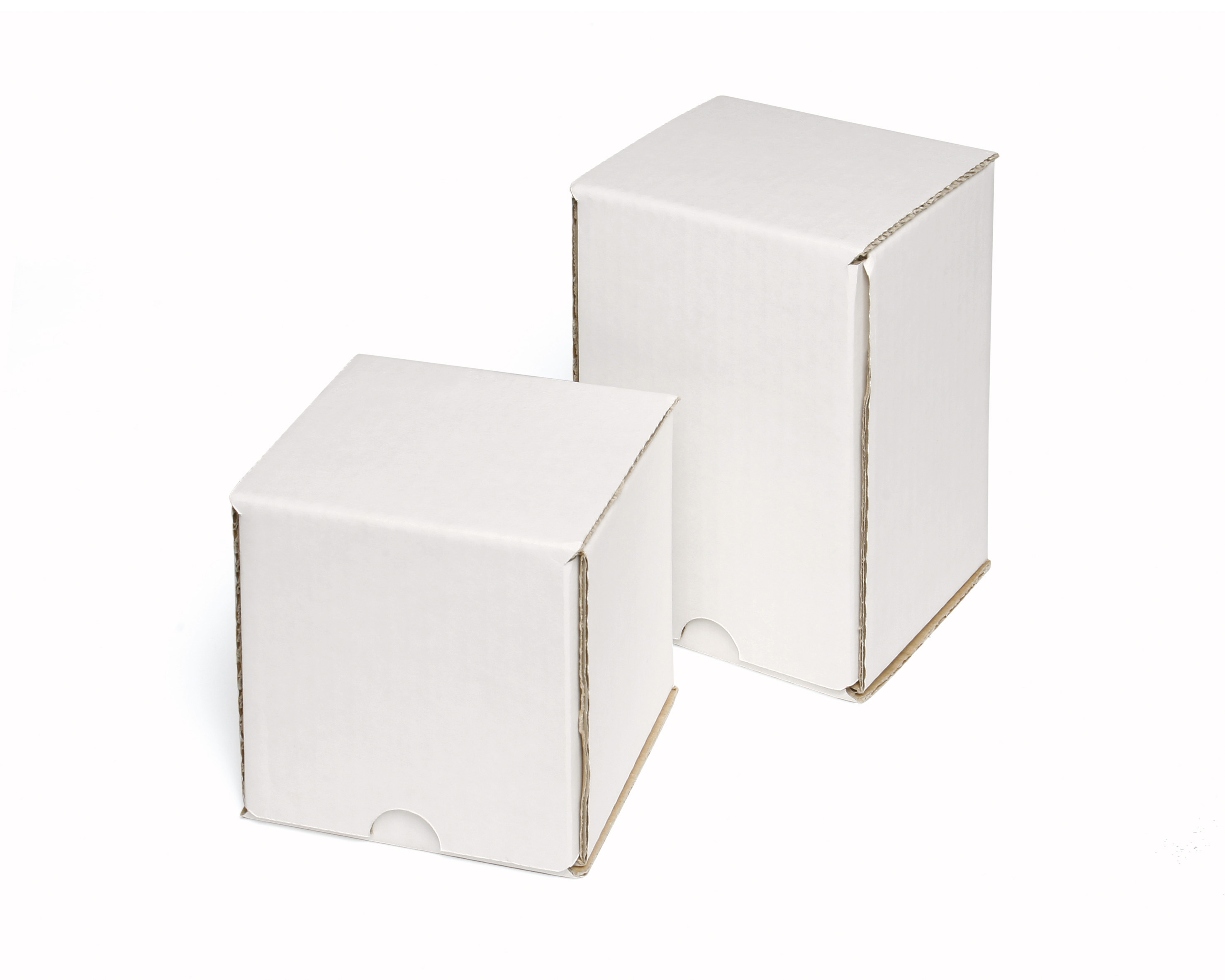 Single White Mailing Carton