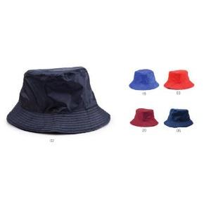 Reversible Hat Nesy